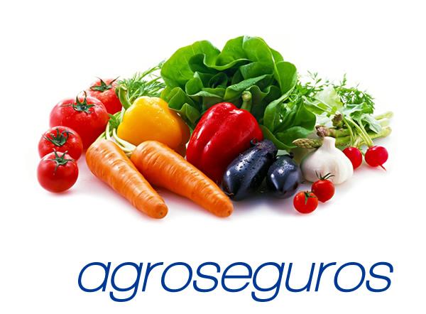 Seguros agrarios y agroseguros